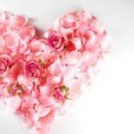 安室奈美恵ベストアルバム「Finally」予約 ショップ限定特典まとめ ポスター付やクリアファイルも!